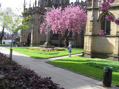 The Manchester Cathedral