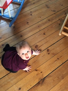 A seven month old baby trying to crawl