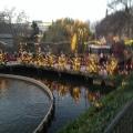 Winter in Tivoli