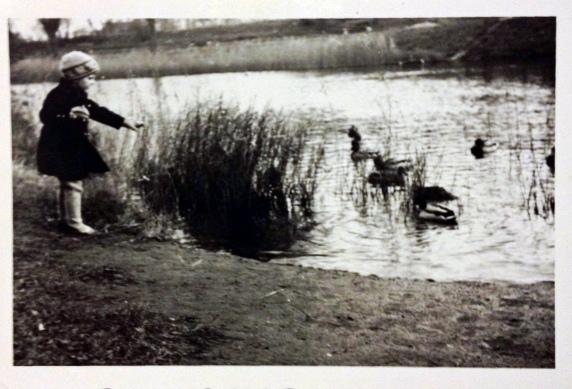 Feeding the birds spring 1943 ©Gunner Johansen