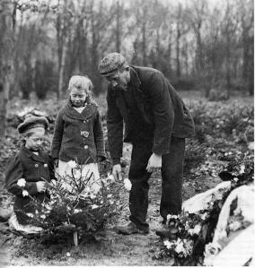 Cemetery for the poor in Copenhagen 1908. Photo Paul Damgaard