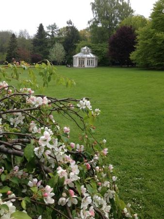 Garden in Gothenburg