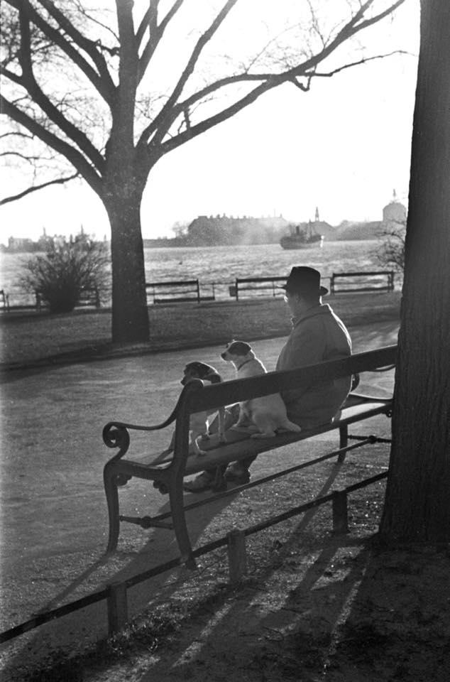 Bænk 1947 Langelinje