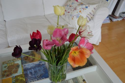 Tulips I bought and cut at a field on my way to Aalborg
