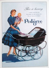 A British model Pedigree from the 1950s