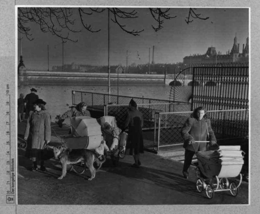 a dark afternoon at the lakes in Copehagen in the 1950s