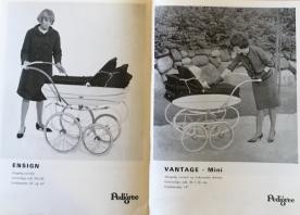 Pedigree-1967-5