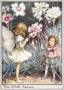 Cicely Mary Barker's Pink Fairies