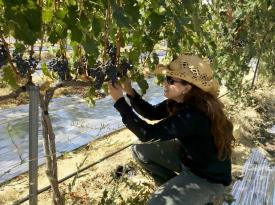 Leah in her wineyard