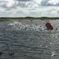 The elite group is in the water at Fulgsanglake
