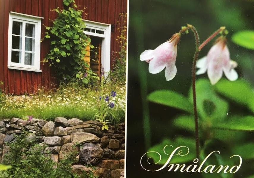 Småland postcard