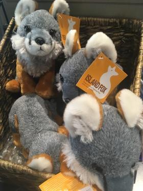 California Channel toy Island fox