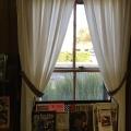 California Library Window