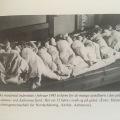 de tyske flygtninge iDK-2