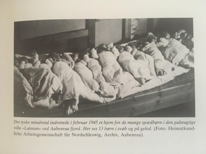 de tyske flygtninge i DK-2