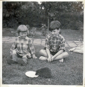 Our neighbour's grandchild and me watching a hedgehog summer 1954