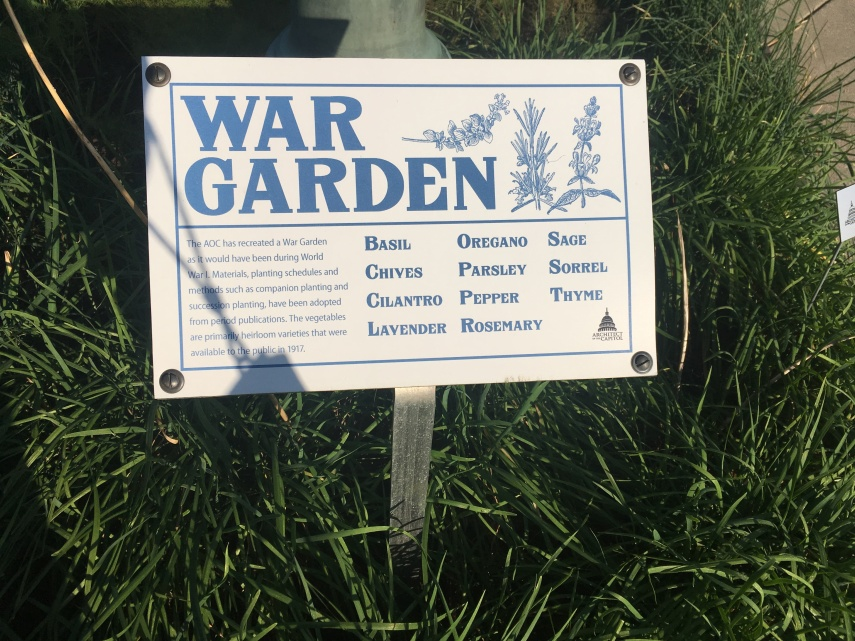 War Gardens memory at Capitol Hill  to help the starving European allies during WWI