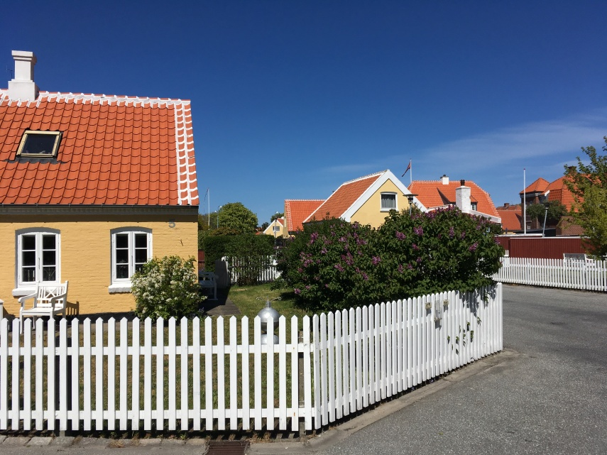 View from the Skagen Museum