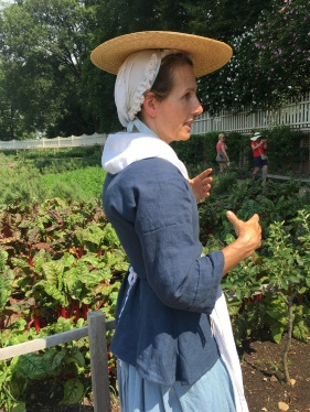 A lady in clothes from Washington's time is inspecting the beetroot or rhubarb garden.