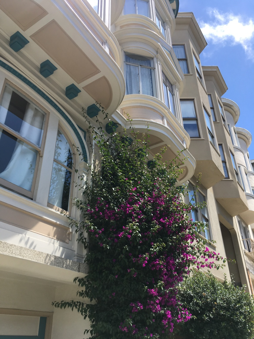 A row of houses at Lombard Street in SF