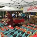 The Saturday Farmer's Market inPortland
