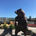 Fox College Newberg,Oregon