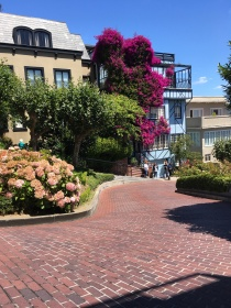 "Lombard St. The ""Crookedest"" Street in the world"