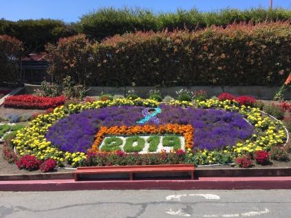 Flower bed from the Golden Gate Visitor Centre 2019