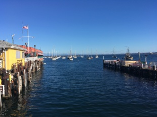 A view from the pier at Monterey