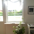 Newly painted walls, new curtains and appleblossom