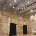 An auditorium at the Nordic Museum in Ballard,Seattle